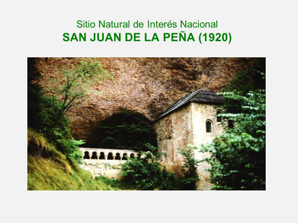 Sitio Natural de Interés Nacional SAN JUAN DE LA PEÑA (1920)
