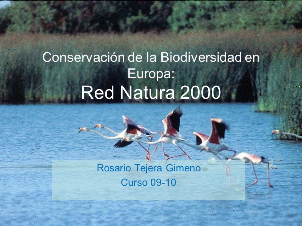 Conservación de la Biodiversidad en Europa: Red Natura 2000 Rosario Tejera Gimeno Curso 09-10