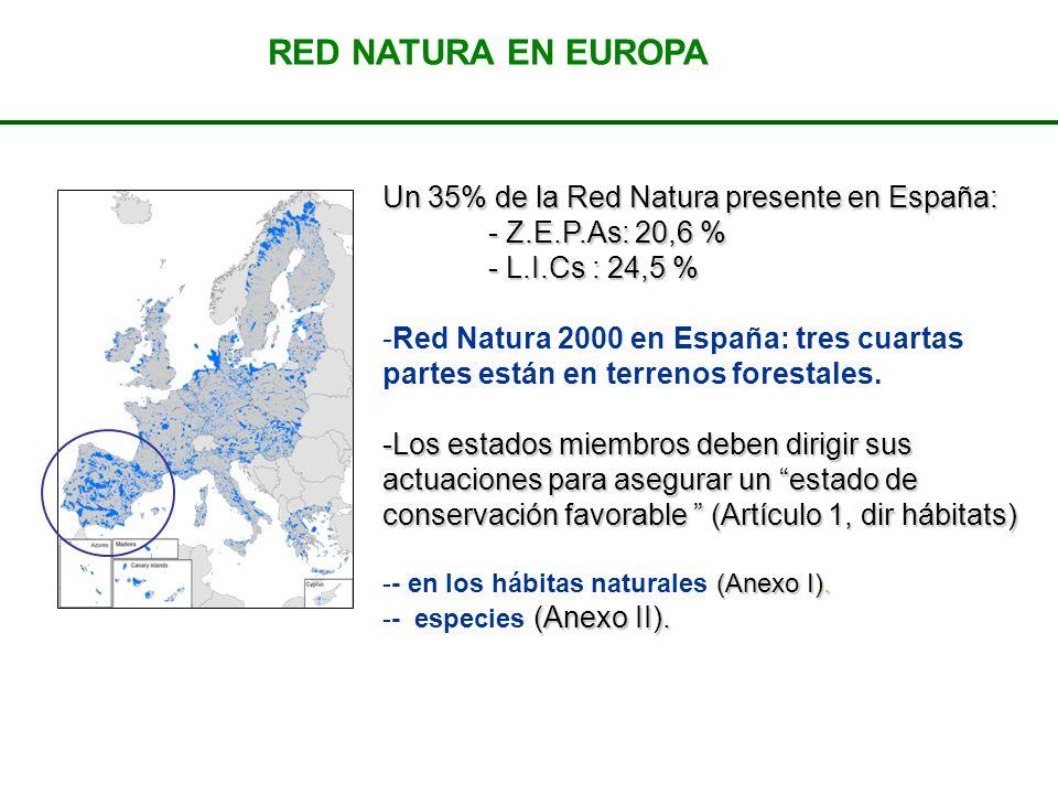 Un 35% de la Red Natura presente en España: - Z.E.P.As: 20,6 % - L.I.Cs : 24,5 % -Red Natura 2000 en España: tres cuartas partes están en terrenos for