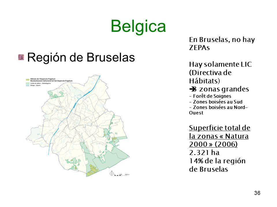 Región de Bruselas 36 Belgica En Bruselas, no hay ZEPAs Hay solamente LIC (Directiva de Hábitats) 3 zonas grandes - Forêt de Soignes - Zones boisées a