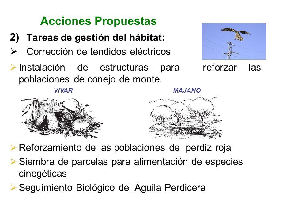 Acciones Propuestas 2) Tareas de gestión del hábitat: Corrección de tendidos eléctricos Instalación de estructuras para reforzar las poblaciones de co
