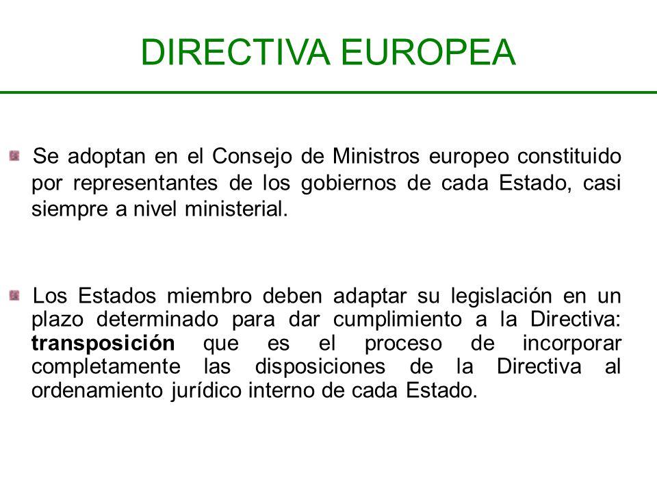 Se adoptan en el Consejo de Ministros europeo constituido por representantes de los gobiernos de cada Estado, casi siempre a nivel ministerial. Los Es