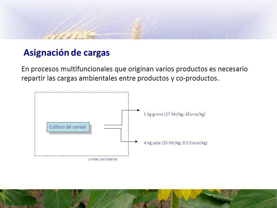 Asignación de cargas En procesos multifuncionales que originan varios productos es necesario repartir las cargas ambientales entre productos y co-productos.