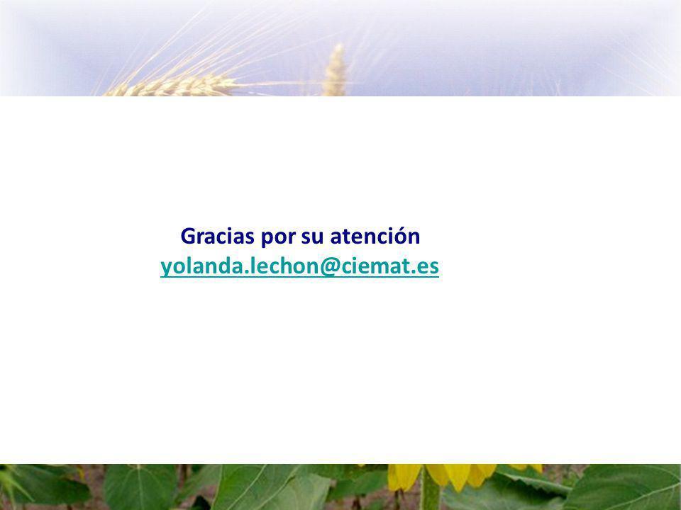 Gracias por su atención yolanda.lechon@ciemat.es