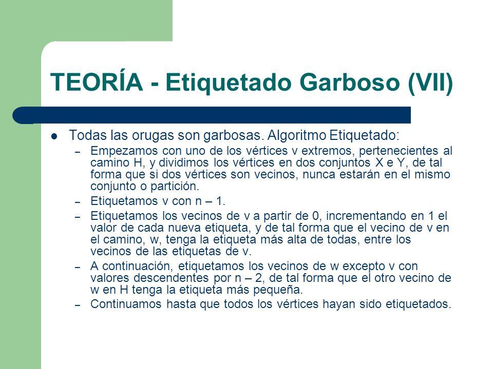 TEORÍA - Etiquetado Garboso (VII) Todas las orugas son garbosas. Algoritmo Etiquetado: – Empezamos con uno de los vértices v extremos, pertenecientes