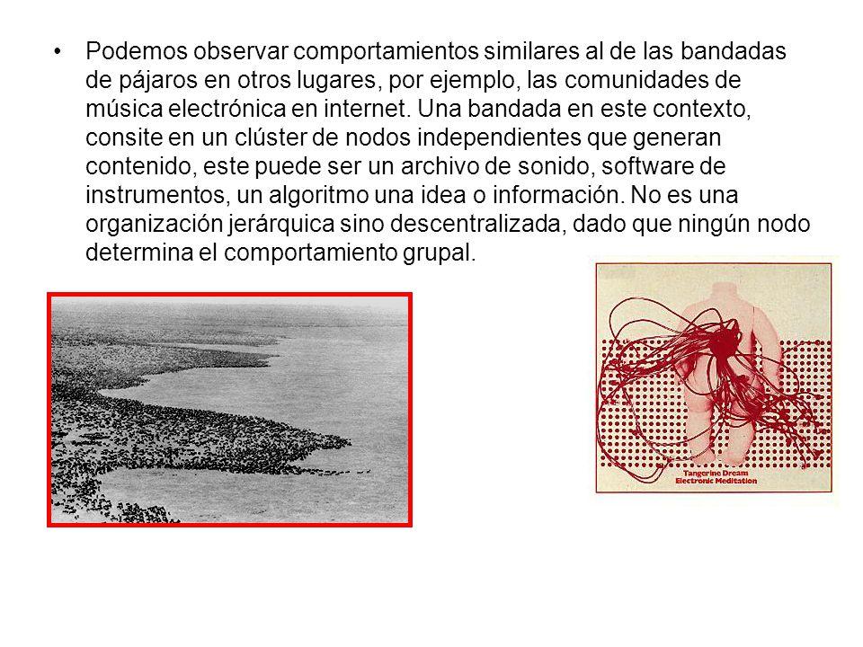 Podemos observar comportamientos similares al de las bandadas de pájaros en otros lugares, por ejemplo, las comunidades de música electrónica en inter