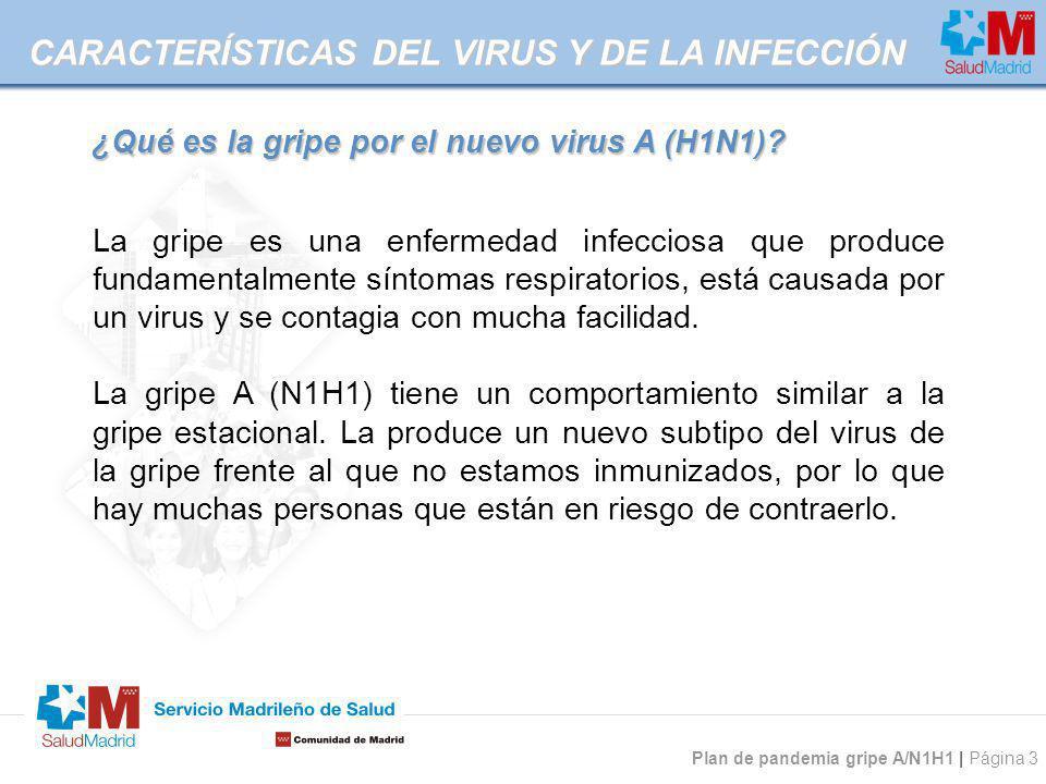 Plan de pandemia gripe A/N1H1 | Página 3 CARACTERÍSTICAS DEL VIRUS Y DE LA INFECCIÓN La gripe es una enfermedad infecciosa que produce fundamentalment