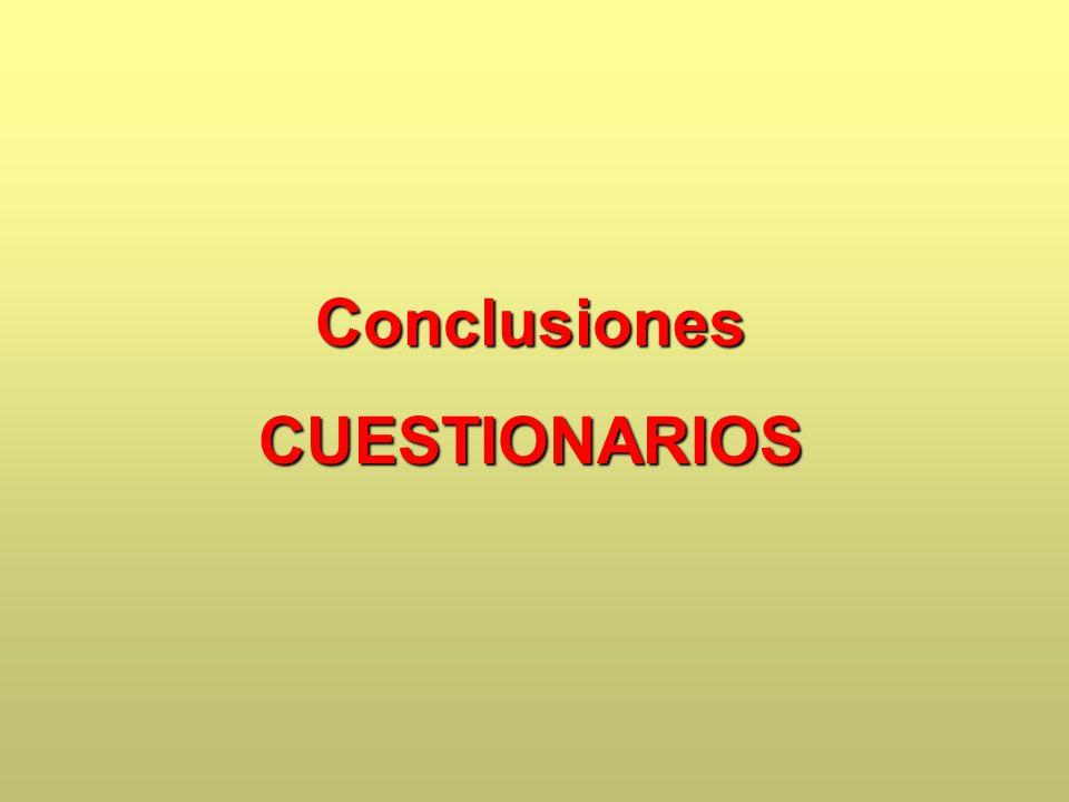 ConclusionesCUESTIONARIOS