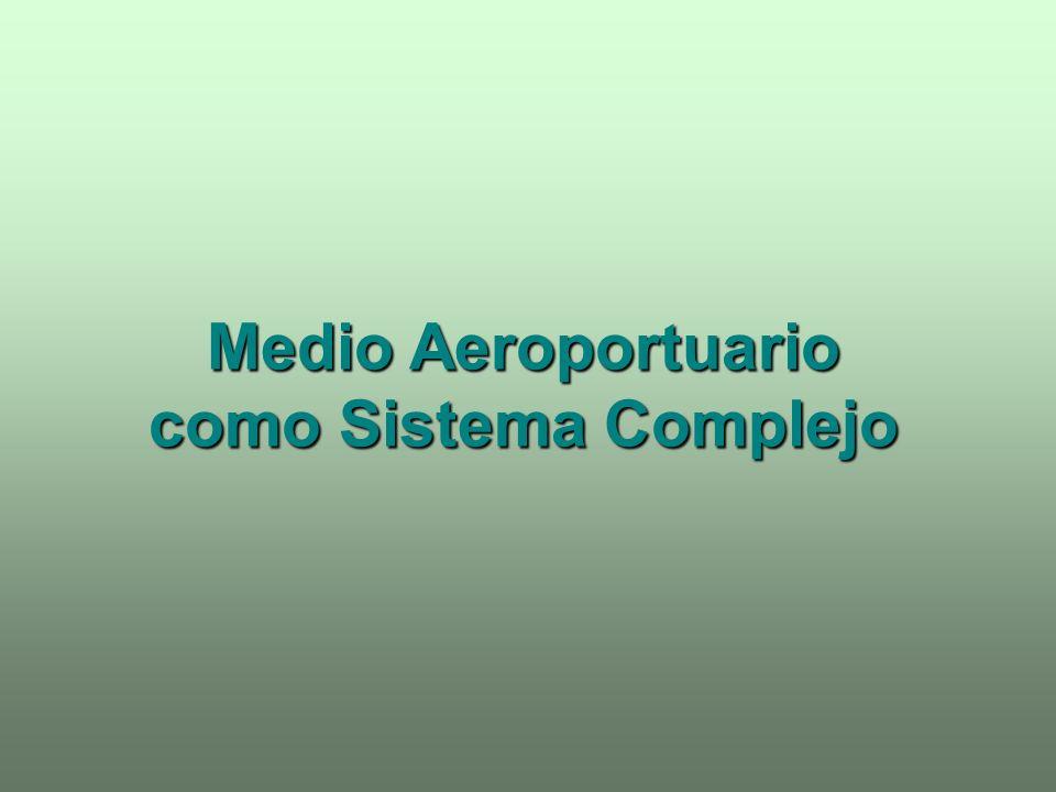 Medio Aeroportuario como Sistema Complejo