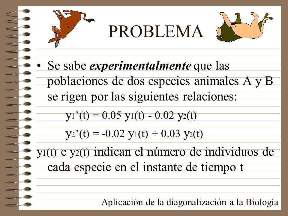 PROBLEMA Se sabe experimentalmente que las poblaciones de dos especies animales A y B se rigen por las siguientes relaciones: y 1 (t) = 0.05 y 1 (t) -