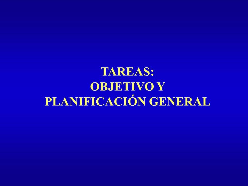 TAREAS: OBJETIVO Y PLANIFICACIÓN GENERAL