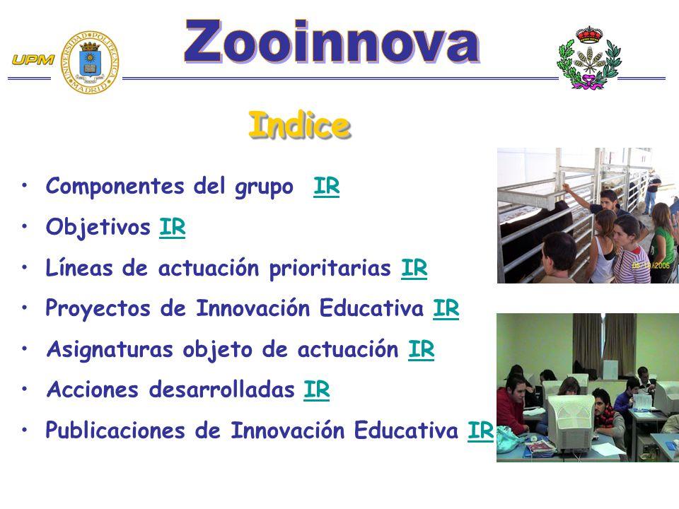 IndiceIndice Componentes del grupo IRIR Objetivos IRIR Líneas de actuación prioritarias IRIR Proyectos de Innovación Educativa IRIR Asignaturas objeto