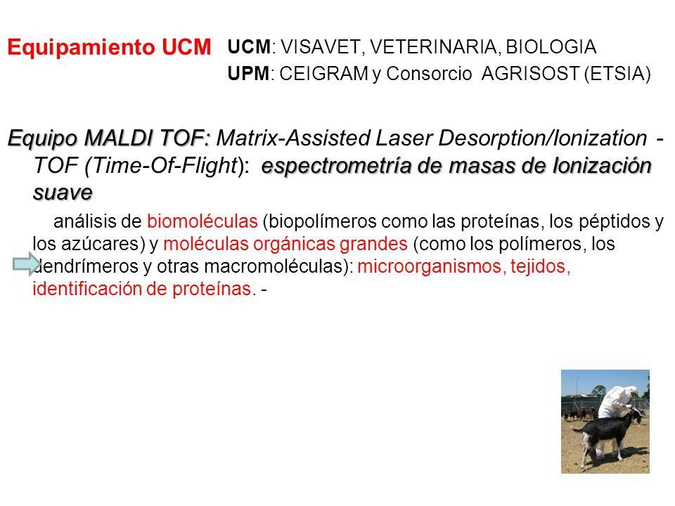 Equipamiento UCM UCM: VISAVET, VETERINARIA, BIOLOGIA UPM: CEIGRAM y Consorcio AGRISOST (ETSIA) Equipo MALDI TOF: espectrometría de masas de Ionización