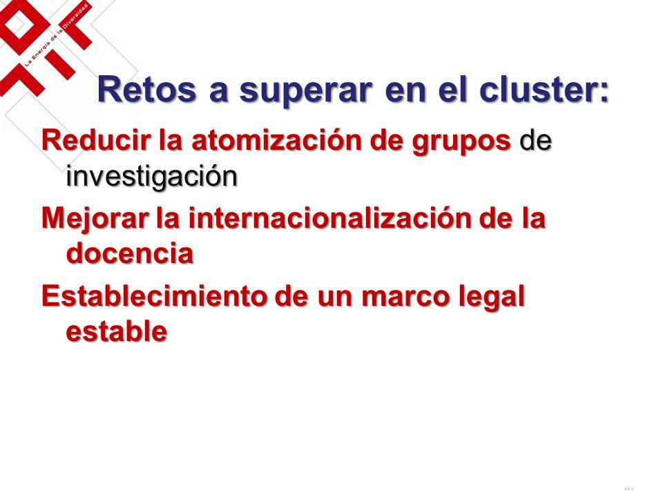 Retos a superar en el cluster: Reducir la atomización de grupos de investigación Mejorar la internacionalización de la docencia Establecimiento de un