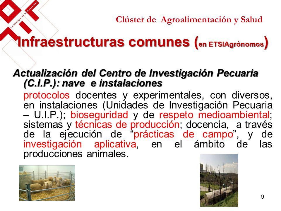 Infraestructuras comunes ( en ETSIAgrónomos ) Actualización del Centro de Investigación Pecuaria (C.I.P.): nave e instalaciones protocolos docentes y