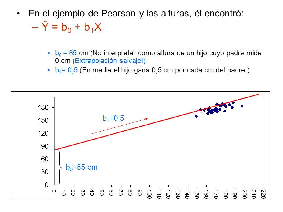 En el ejemplo de Pearson y las alturas, él encontró: –Ŷ = b 0 + b 1 X b 0 = 85 cm (No interpretar como altura de un hijo cuyo padre mide 0 cm ¡Extrapolación salvaje!) b 1 = 0,5 (En media el hijo gana 0,5 cm por cada cm del padre.) b 0 =85 cm b 1 =0,5