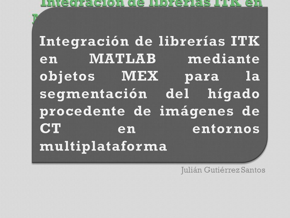 Traducir el código de MATLAB a C++ Conectar ITK y MATLAB Instalar LiverSegm en Ubuntu 64Bits Instalar LiverSegm en Magerit Conocer el estado actual de la técnica GVA-ELAI-UPM®PFC0092-2009 2