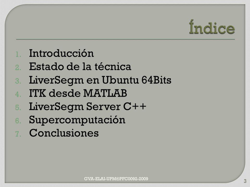 1. Introducción 2. Estado de la técnica 3. LiverSegm en Ubuntu 64Bits 4. ITK desde MATLAB 5. LiverSegm Server C++ 6. Supercomputación 7. Conclusiones