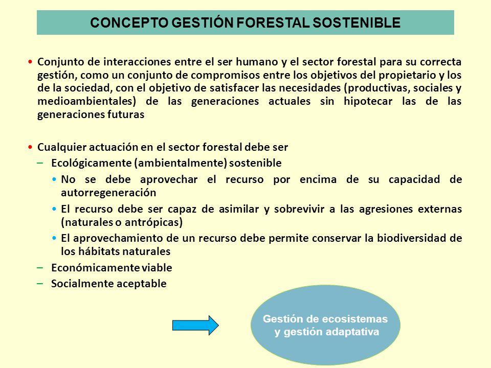 Conjunto de interacciones entre el ser humano y el sector forestal para su correcta gestión, como un conjunto de compromisos entre los objetivos del p