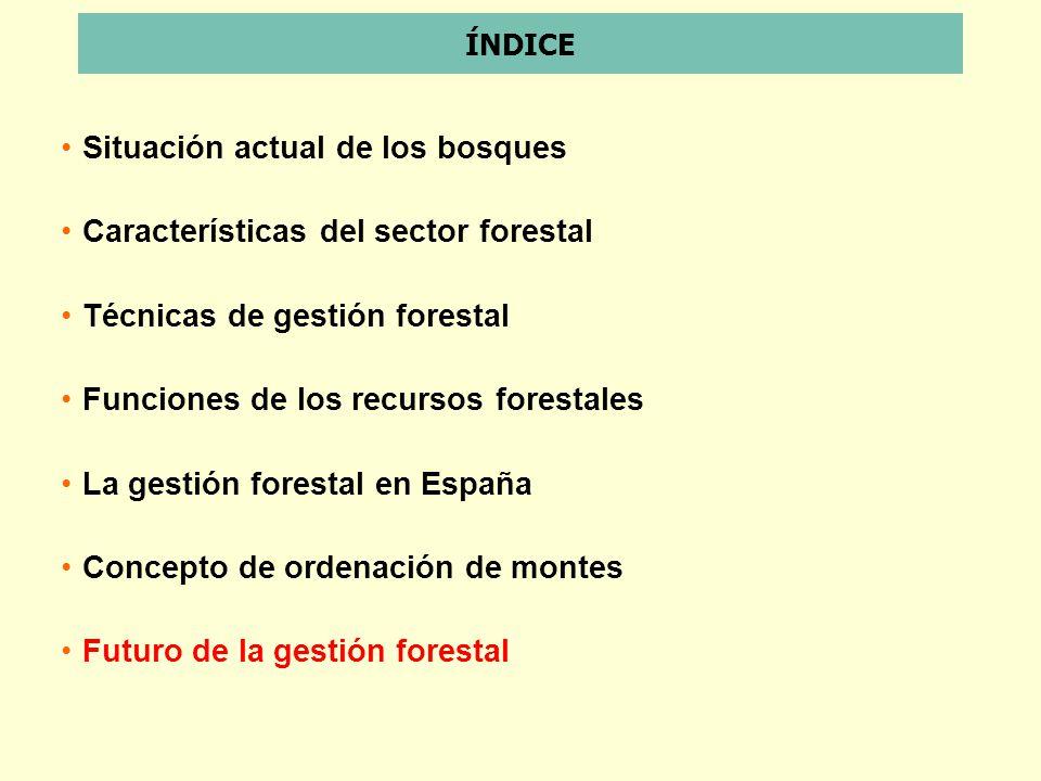 ÍNDICE Situación actual de los bosques Características del sector forestal Técnicas de gestión forestal Funciones de los recursos forestales La gestió