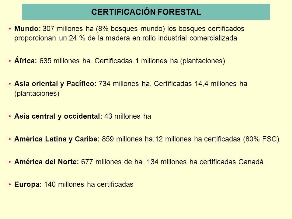 Mundo: 307 millones ha (8% bosques mundo) los bosques certificados proporcionan un 24 % de la madera en rollo industrial comercializada África: 635 mi