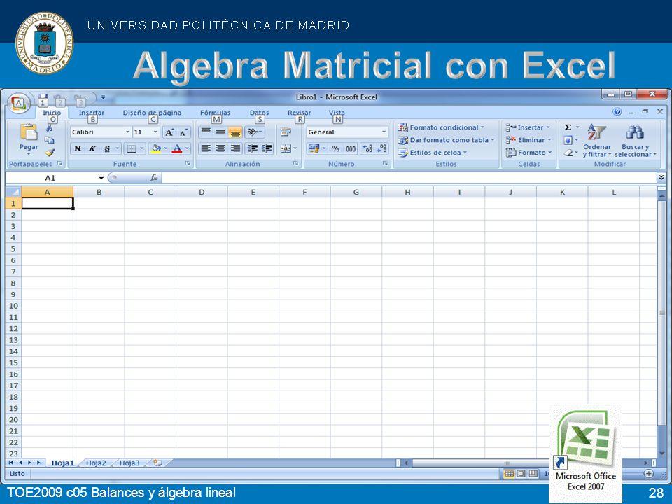 28 TOE2009 c05 Balances y álgebra lineal Algebra Matricial con Excel