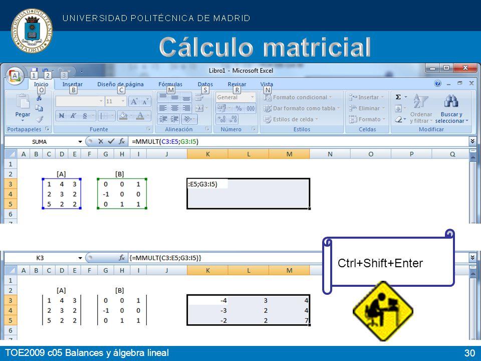 30 TOE2009 c05 Balances y álgebra lineal Ctrl+Shift+Enter