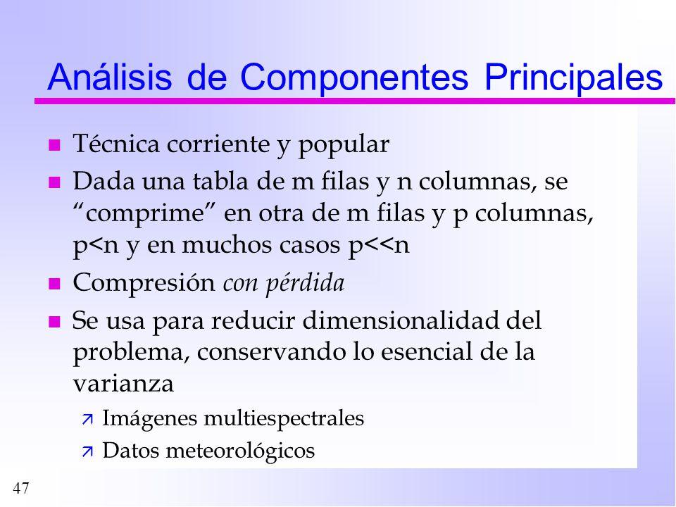 47 Análisis de Componentes Principales n Técnica corriente y popular n Dada una tabla de m filas y n columnas, se comprime en otra de m filas y p colu