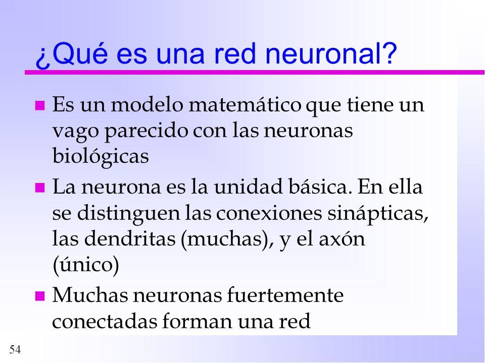 54 ¿Qué es una red neuronal? n Es un modelo matemático que tiene un vago parecido con las neuronas biológicas n La neurona es la unidad básica. En ell