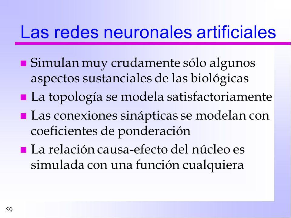 59 Las redes neuronales artificiales n Simulan muy crudamente sólo algunos aspectos sustanciales de las biológicas n La topología se modela satisfacto
