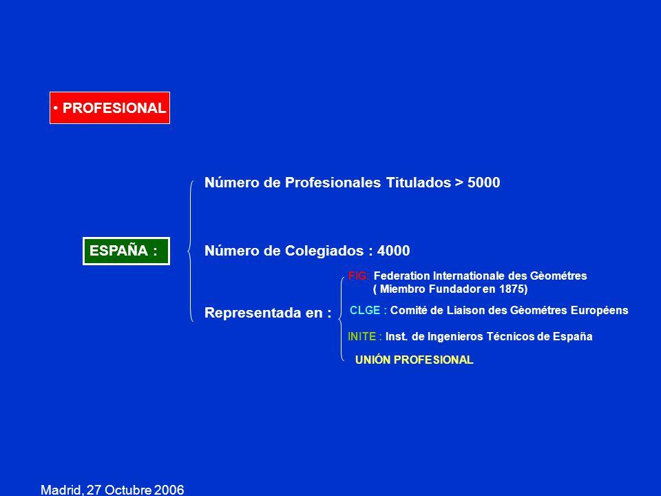 Madrid, 27 Octubre 2006 PROFESIONAL ESPAÑA : Número de Profesionales Titulados > 5000 Número de Colegiados : 4000 Representada en : FIG: Federation In