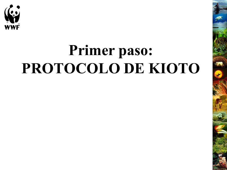 ¿Qué es el Protocolo de Kioto.