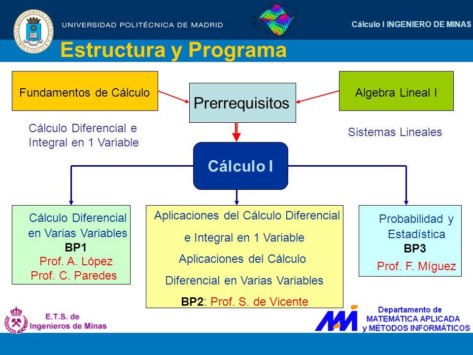 Cálculo I INGENIERO DE MINAS Estructura y Programa Prerrequisitos Algebra Lineal I Fundamentos de Cálculo Sistemas Lineales Cálculo Diferencial e Inte