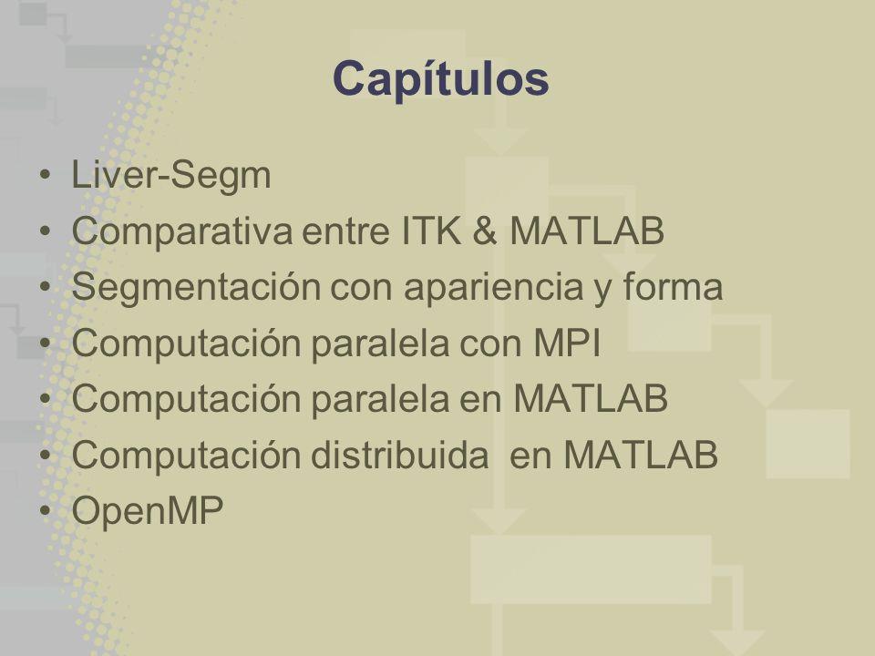 Capítulos Liver-Segm Comparativa entre ITK & MATLAB Segmentación con apariencia y forma Computación paralela con MPI Computación paralela en MATLAB Co