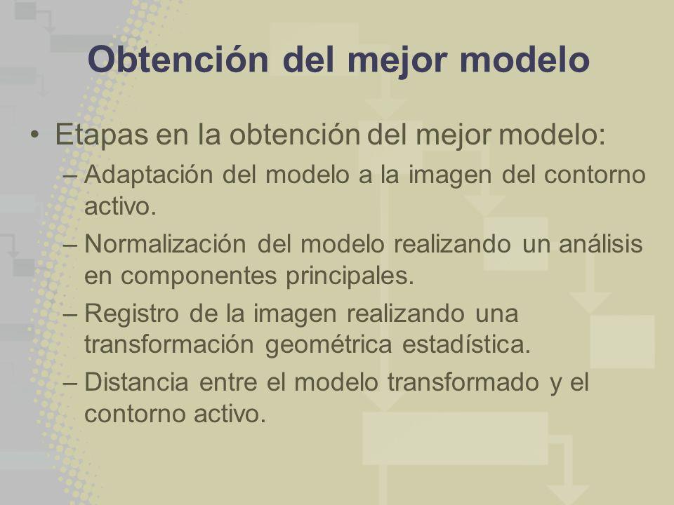 Obtención del mejor modelo Etapas en la obtención del mejor modelo: –Adaptación del modelo a la imagen del contorno activo. –Normalización del modelo