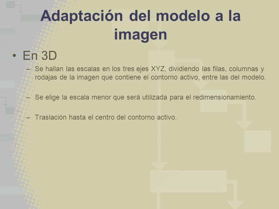 Adaptación del modelo a la imagen En 3D –Se hallan las escalas en los tres ejes XYZ, dividiendo las filas, columnas y rodajas de la imagen que contiene el contorno activo, entre las del modelo.