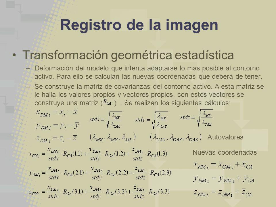 Registro de la imagen Transformación geométrica estadística –Deformación del modelo que intenta adaptarse lo mas posible al contorno activo. Para ello
