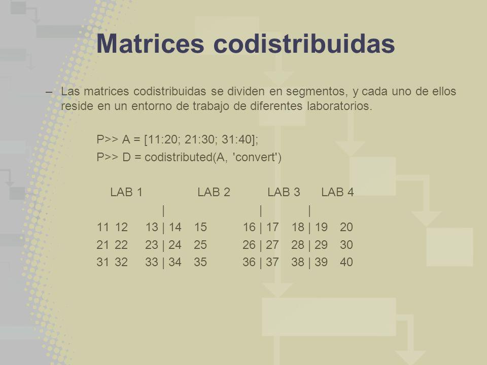 –Las matrices codistribuidas se dividen en segmentos, y cada uno de ellos reside en un entorno de trabajo de diferentes laboratorios. P>> A = [11:20;