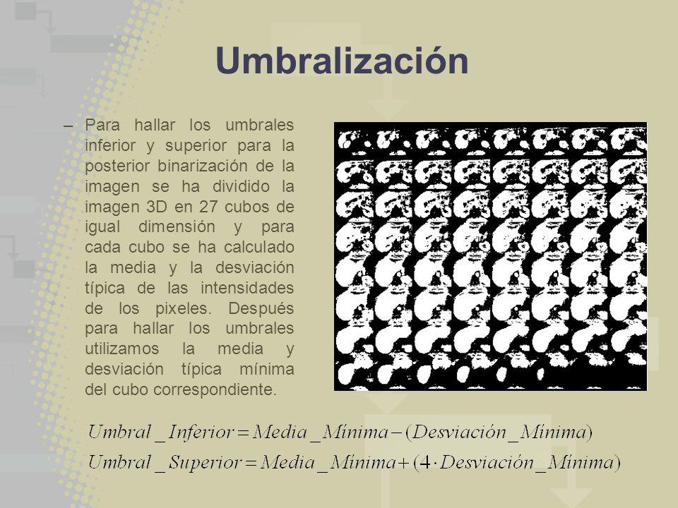 Umbralización –Para hallar los umbrales inferior y superior para la posterior binarización de la imagen se ha dividido la imagen 3D en 27 cubos de igu