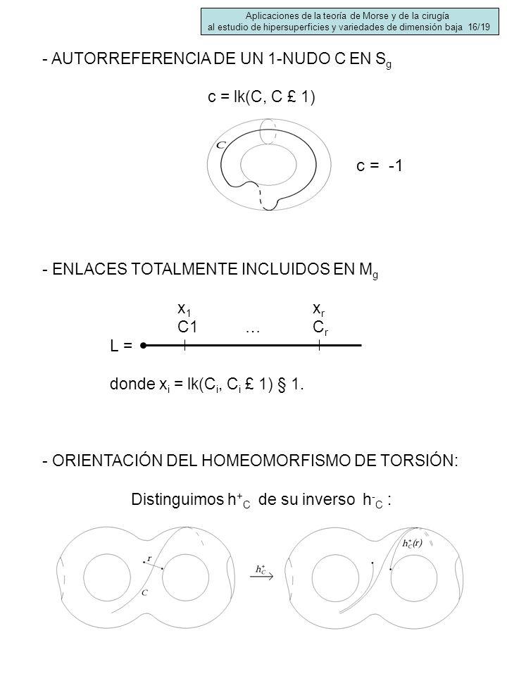 - AUTORREFERENCIA DE UN 1-NUDO C EN S g c = lk(C, C £ 1) - ENLACES TOTALMENTE INCLUIDOS EN M g x1xrx1xr C1…C r L = donde x i = lk(C i, C i £ 1) § 1. -