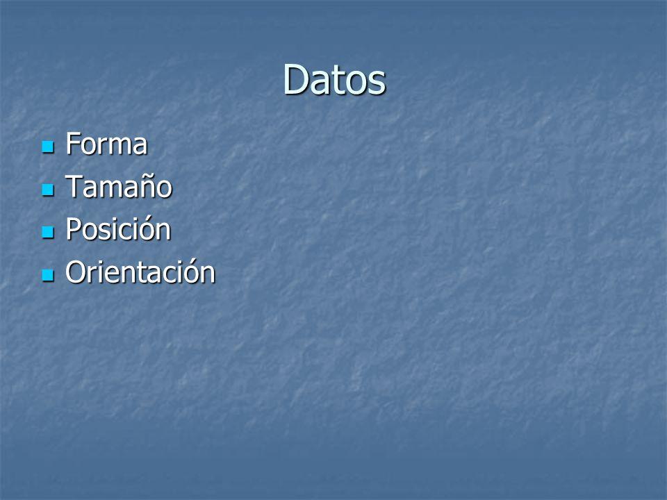 Datos Forma Forma Tamaño Tamaño Posición Posición Orientación Orientación