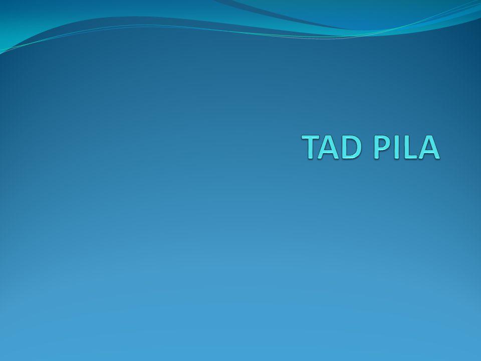 Especificación de TADs.TAD Pila de Enteros.