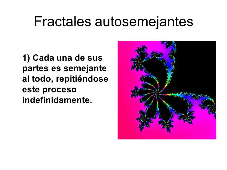 Fractales autosemejantes 1) Cada una de sus partes es semejante al todo, repitiéndose este proceso indefinidamente.