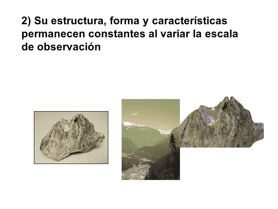2) Su estructura, forma y características permanecen constantes al variar la escala de observación