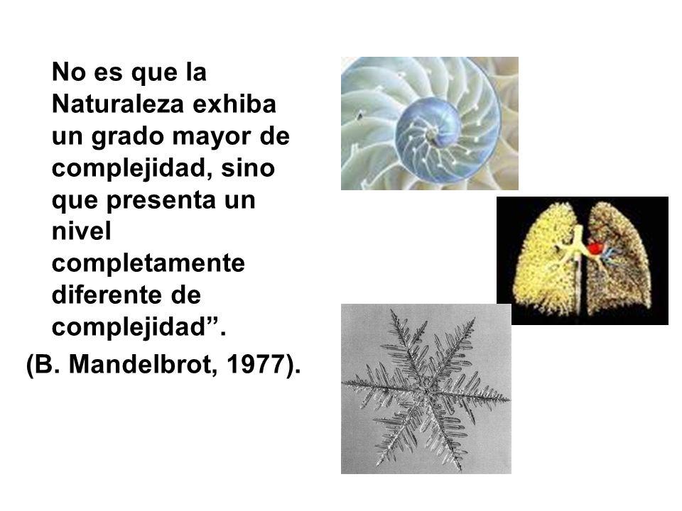 No es que la Naturaleza exhiba un grado mayor de complejidad, sino que presenta un nivel completamente diferente de complejidad. (B. Mandelbrot, 1977)