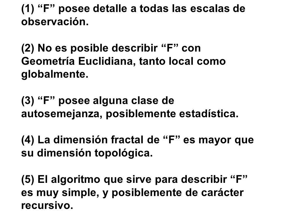 (1) F posee detalle a todas las escalas de observación. (2) No es posible describir F con Geometría Euclidiana, tanto local como globalmente. (3) F po