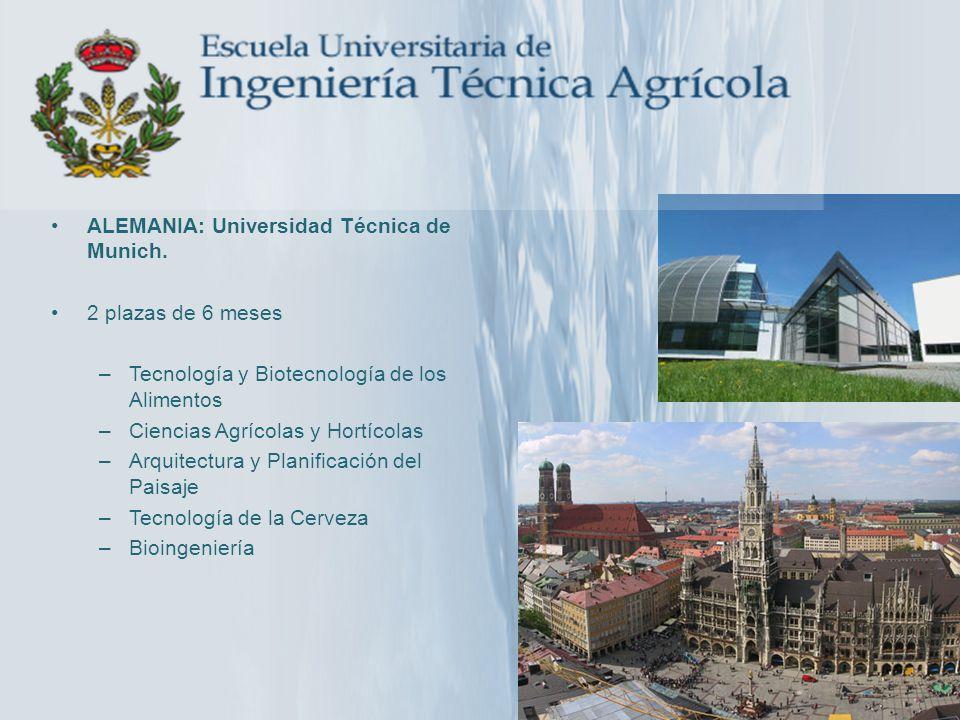 ALEMANIA: Universidad Técnica de Munich. 2 plazas de 6 meses –Tecnología y Biotecnología de los Alimentos –Ciencias Agrícolas y Hortícolas –Arquitectu