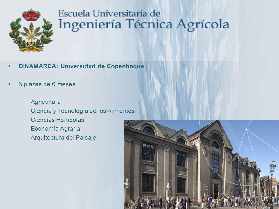 DINAMARCA: Universidad de Copenhague 5 plazas de 6 meses –Agricultura –Ciencia y Tecnología de los Alimentos –Ciencias Hortícolas –Economía Agraria –A