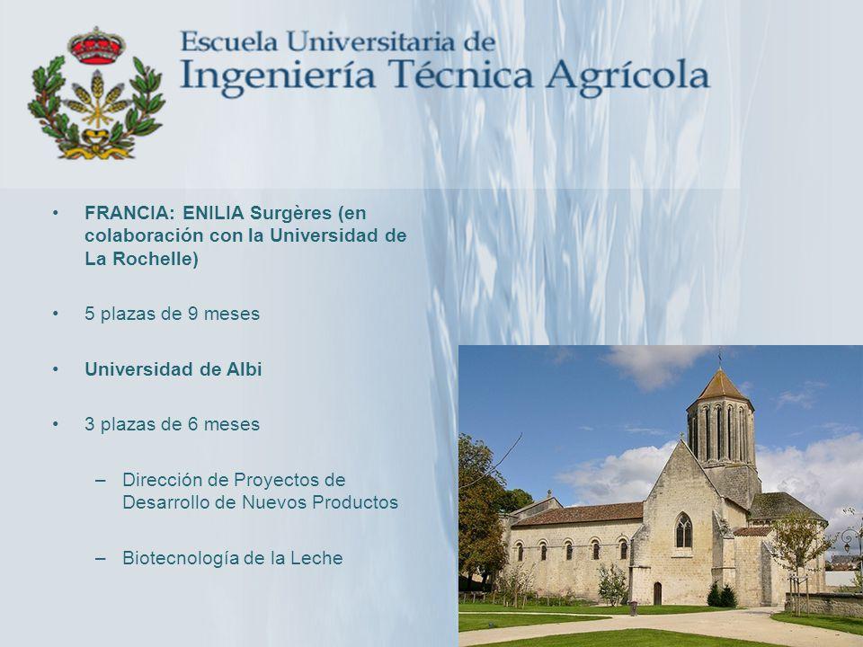 FRANCIA: ENILIA Surgères (en colaboración con la Universidad de La Rochelle) 5 plazas de 9 meses Universidad de Albi 3 plazas de 6 meses –Dirección de