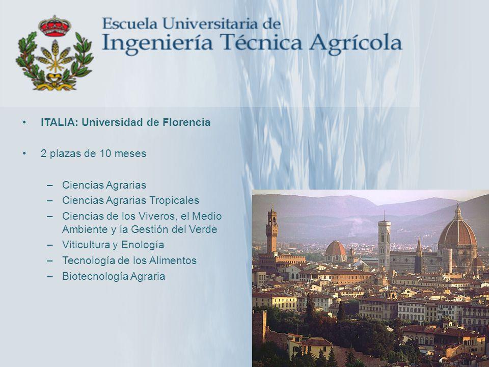 ITALIA: Universidad de Florencia 2 plazas de 10 meses –Ciencias Agrarias –Ciencias Agrarias Tropicales –Ciencias de los Viveros, el Medio Ambiente y l